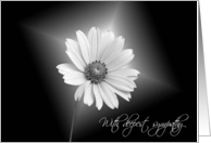 With Deepest Sympathy and glowing white daisy on black card