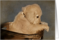 Thinking of you with Golden Retriever puppy in vintage tub card