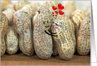 Wedding Anniversary for spouse-pair of nuts hugging card