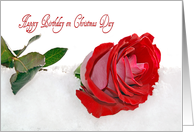 Mom's Birthday on Christmas Day-red rose in snow card