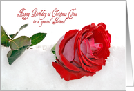 Friend's Birthday at Christmas time-red rose in snow card