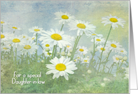 Daughter-in-law's Birthday-white daisies in field with soft texture card