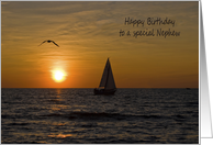 Nephew's Birthday sailboat sailing on lake at sunset with seagull card