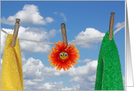 Friendship orange daisy with towels hanging on clothesline card