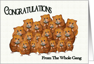 Congratulations From the Whole Gang, Crowd of Cute Hamsters, Daisies card