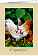 Congratulations New Job, Rooster in Garden, Something To Crow About card