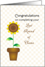 Last Round of Chemotherapy Card with Sunflower in Flower Pot card