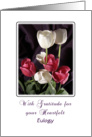 Eulogy Thank You Greeting Card-Tulips-Flowers card