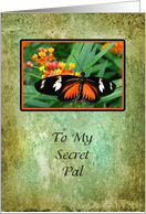 Secret Pal Greeting Card with Orange and Black Butterfly card