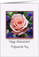 Administrative Professionals Day Greeting Card-Pink Rose card