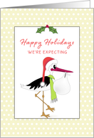 We're Expecting Christmas Greeting Card-Pregnant-New Baby-Stork card