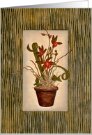 Floral - Potted Tiger Orchid card