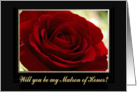 Red Rose, Will you be my Matron of Honor card