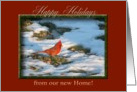 Cardinal in the Snow, from our new Home, Happy Holidays card