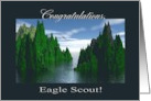 Congratulations Eagle Scout, Bald Eagle Flying card