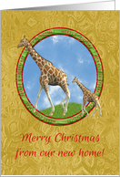 Mother Giraffe with Baby, Circle Merry Christmas Frame, Gold Design card