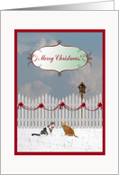 Cats Listening to a Bird Sing, Merry Christmas to Piano Teacher card
