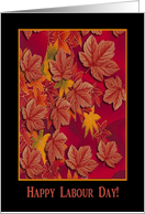 Happy Labour Day, Canadian, Maple Leaves card