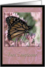 Buon Compleanno, Happy Birthday in Italian, Beautiful Butterfly card