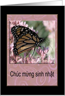 Beautiful Monarch Butterfly, Happy Birthday in Vietnamese card