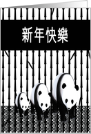 Panda Bear Family, Happy Chinese New Year In Chinese, Black & White card