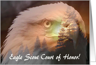 Eagle Through the Trees, Eagle Scout Court of Honor card