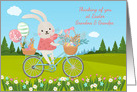 For Grandma and Grandpa Easter Bunny On Bicycle in Spring card