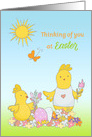 Easter Yellow Chicks Thinking of You card