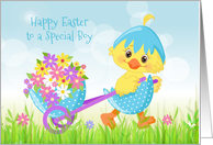Special Boy Easter Yellow Chick with Flowers card