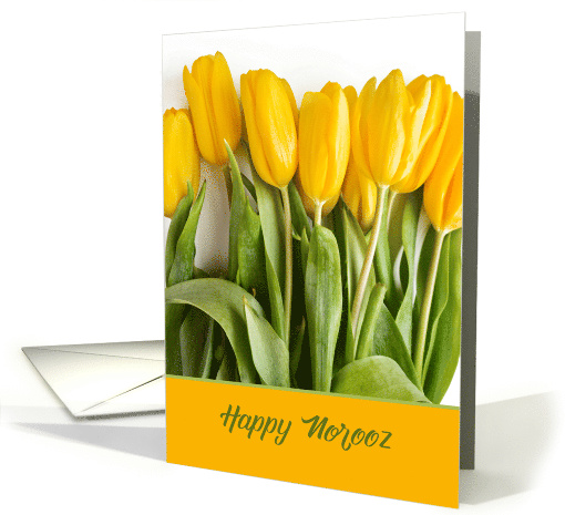 Bright Yellow Tulips for Norooz Persian New Year card (1603066)
