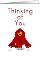 Thinking of You, Cartoon Bird card