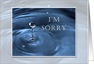 I'm Sorry, Water Drop card