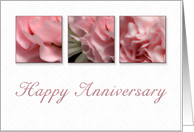 Happy Anniversary, Pink Flower on White Background card
