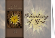 Thinking of You While I Am Deployed, Yellow Flower on Brown Background card