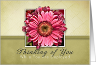Thinking of You While You Are Deployed, Framed Pink Flower on Tan and Green Background card