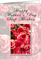 Step Mother Happy Mother's Day, Pink Flowers card
