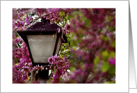 Thinking of You While I Am Deployed Pink Flowers and Lamp Post card