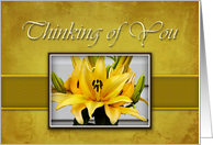Thinking of You Military Deployement, Yellow Lily on Yellow Background card