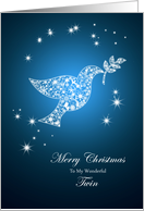 For twin,Dove of peace Christmas card