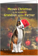 Grandson and Partner, a Cute Cat in a Christmas Hat. card