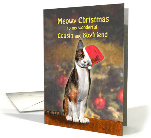 Cousin and Boyfriend, a Cute Cat in a Christmas Hat. card (1586944)