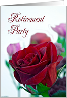 Retirement Party. Classic single red rose card