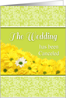 Announcement-Cancelled Wedding With Daises-Custom card
