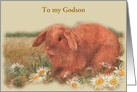 Godson 40 Birthday Illustrated Brown Bunny card