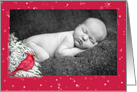 Winter Cardinal Xmas illustration custom photo card