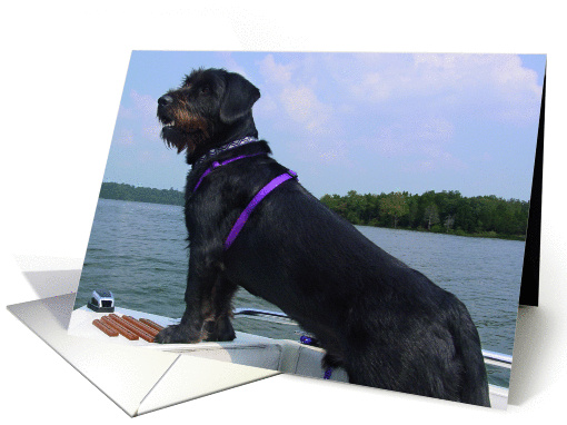 Dog wishes card (286781)