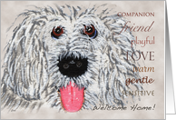 Pet Services Business Welcome Home card