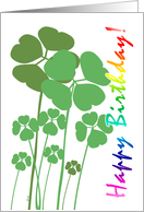 Birthday St. Patrick's Day Shamrocks Rainbow Text card