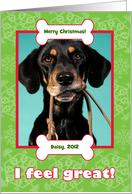 Veterinarian Christmas Photo Card from Dog with Bones and Snowflakes card