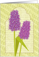 Persian New Year Norooz Purple and Pink Hyacinths Our House to Yours card
